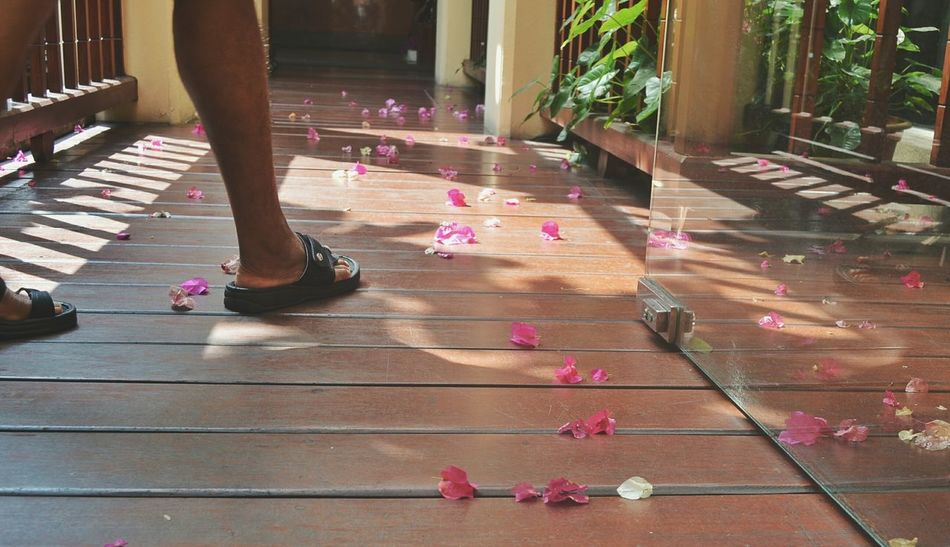 Be careful where you tread, there are tiny fairies everywhere. People Lifestyles Low Section Pink Color Adult Day One Person Outdoors City Frontporch Thailand Flowers 🌸🌸🌸 Fowers On The Floor BYOPaper! Place Of Heart The Week On EyeEm Second Acts Inner Power A New Perspective On Life