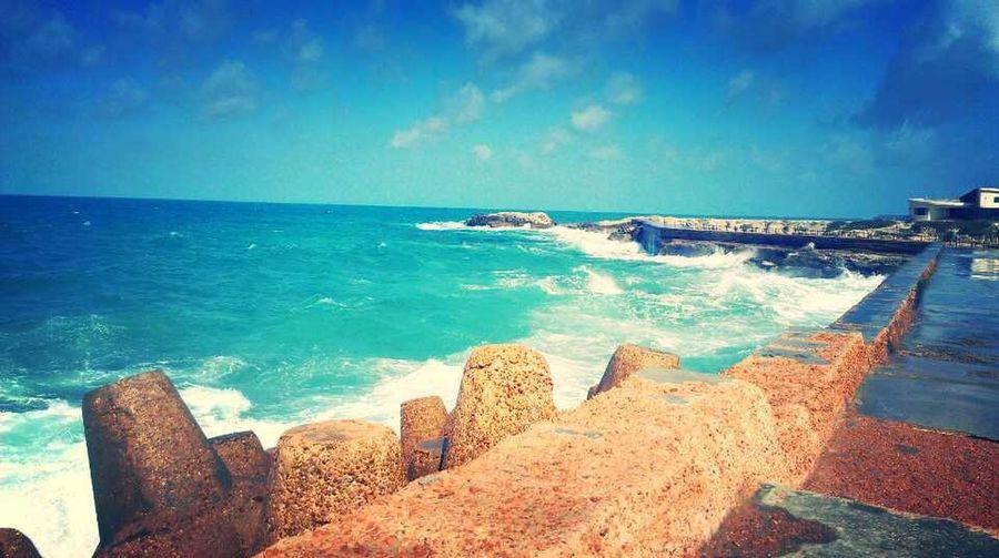 taken by me... Alexandria , Egypt The Environmentalist – 2014 EyeEm Awards Beachphotography Life Is A Beach Beach