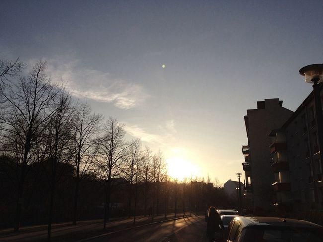Sun Sunset Enjoying The Sun Enjoying Life