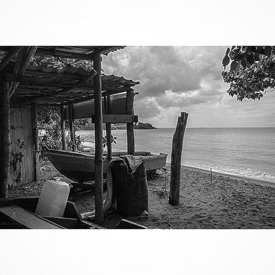 Bnw_photografare Andyjohnsonphotography Great_bnw_nature Grenada Teamnikon Thebest_capture Theblueislands Islandlivity Island360 Livefunner Uncoveryours Westindies_pictures Westindies_landscape Amazing_allshots PureGrenada Photo_colection Photo_colection_ Photo_beaches