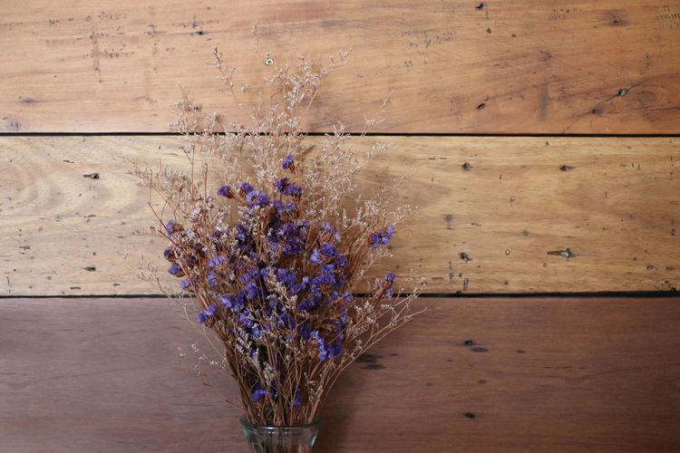 Bunch Of Flowers Flower Flowering Plant Plant Purple Wall - Building Feature Wood Wood - Material