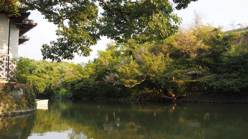Beauty In Nature Boating Countryside Green Green Color Growth Lake Lush Foliage Majestic Nature No People Non-urban Scene Outdoors Reflection Scenics Surrounding Tranquil Scene Tranquility Tree Water Waterfront Yanagawa-shi 川下り 柳川 柳川川下り