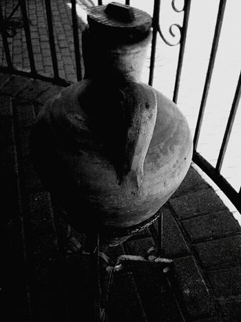 Blackandwhite Photography Black And White Collection  Black And White Photography Black&white Blackandwhite Black & White Blanco Y Negro Black And White Jarron Anfora