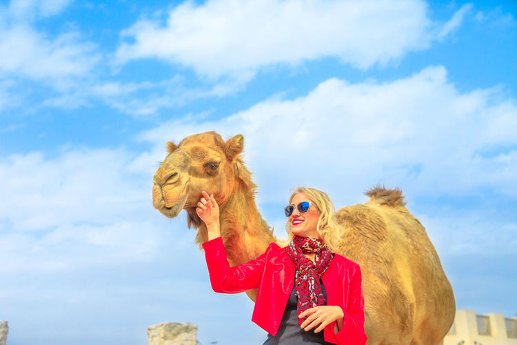 Happy blonde woman embraces a camel in Doha city center, near Souq Waqif, the old market, popular tourist in Al Souq District, Qatar. Caucasian tourist enjoys in Middle East of Arabian Peninsula. Doha Doha,Qatar Qatar Waterfront Woman Model Girl Female Tourist Seascape Tourist Attraction  Holiday Vacation People Camel Dromedary Animal Ride Nature Mammal Sky Cloud - Sky Domestic Animals One Animal Pets Domestic Day Hair Lifestyles Women Clothing Real People Leisure Activity Brown Outdoors Warm Clothing Hairstyle