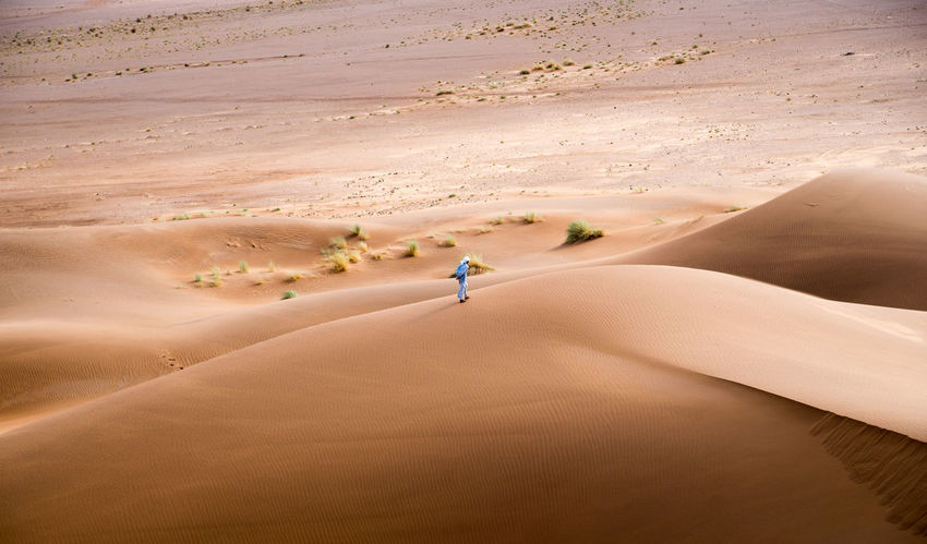 Lonely Morocco Thirst Adventure Arid Climate Beauty In Nature Day Desert Full Length Landscape Lifestyles Mammal Nature One Person Outdoors People Real People Sahara Sand Sand Dune Sandy Scenics Vacations Young Adult