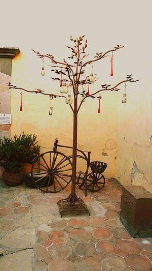 Visiting one of the Pueblos Mágicos De México Bernal De San Sebastián, Querétaro Travel Destinations No People Tree Bicycle Metallic Tree Metal Art Day Outdoors EyeEmNewHere
