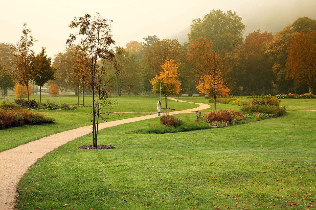 Woman alone in an autumnal park Bugapark Gera Loneliness Nature Woman Autumn Beauty In Nature Fall Foggy Day Germany Green Color Growth Landscape Lonley Nature Naturelovers One Woman Only Outdoors Park Park - Man Made Space Path In Nature Quite Place Scenics Tranquil Scene Tranquility