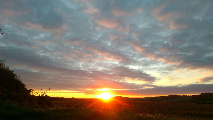 Sunrise Cornwall Morning Sky Countryside Hello World Feeling Thankful
