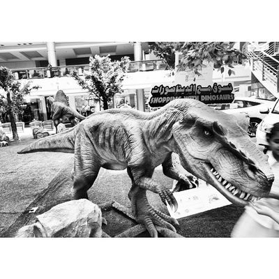 A Dinosaur model at the Dinosaurs display area. Red_sea_mall Redseamall redsea mall. jeddah saudiarabia saudi_arabia. Taken by my sonyalpha dslr a57. ديناصور ديناصورات ردسي مول جدة السعودية