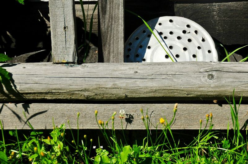 Country Life Old Wooden Stair Hello World Enjoying Life