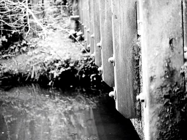 Wood - Material Day No People Outdoors Close-up Nature Devon Bridge - Man Made Structure Black And White