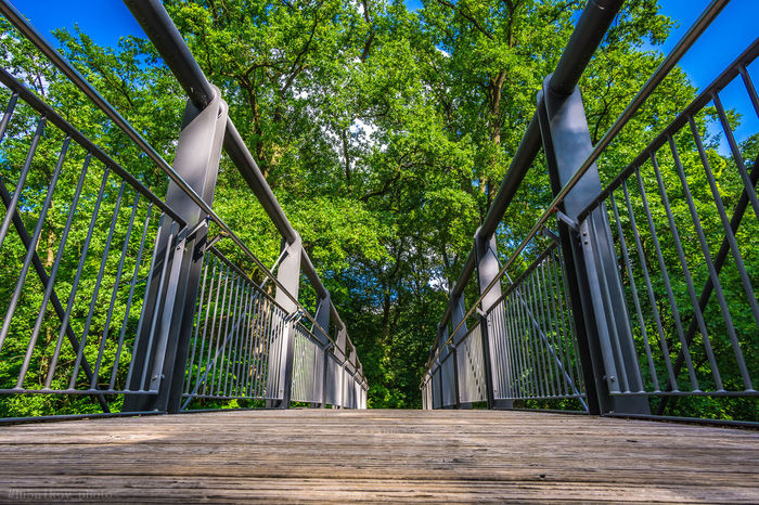 Bruecke Bridge Nueremberg Metal Baum Tree HDR Tree Outdoors Day Green Color No People Growth Architecture Travel Destinations City Architecture Architecture_collection Beauty In Nature Sky Nature First Eyeem Photo