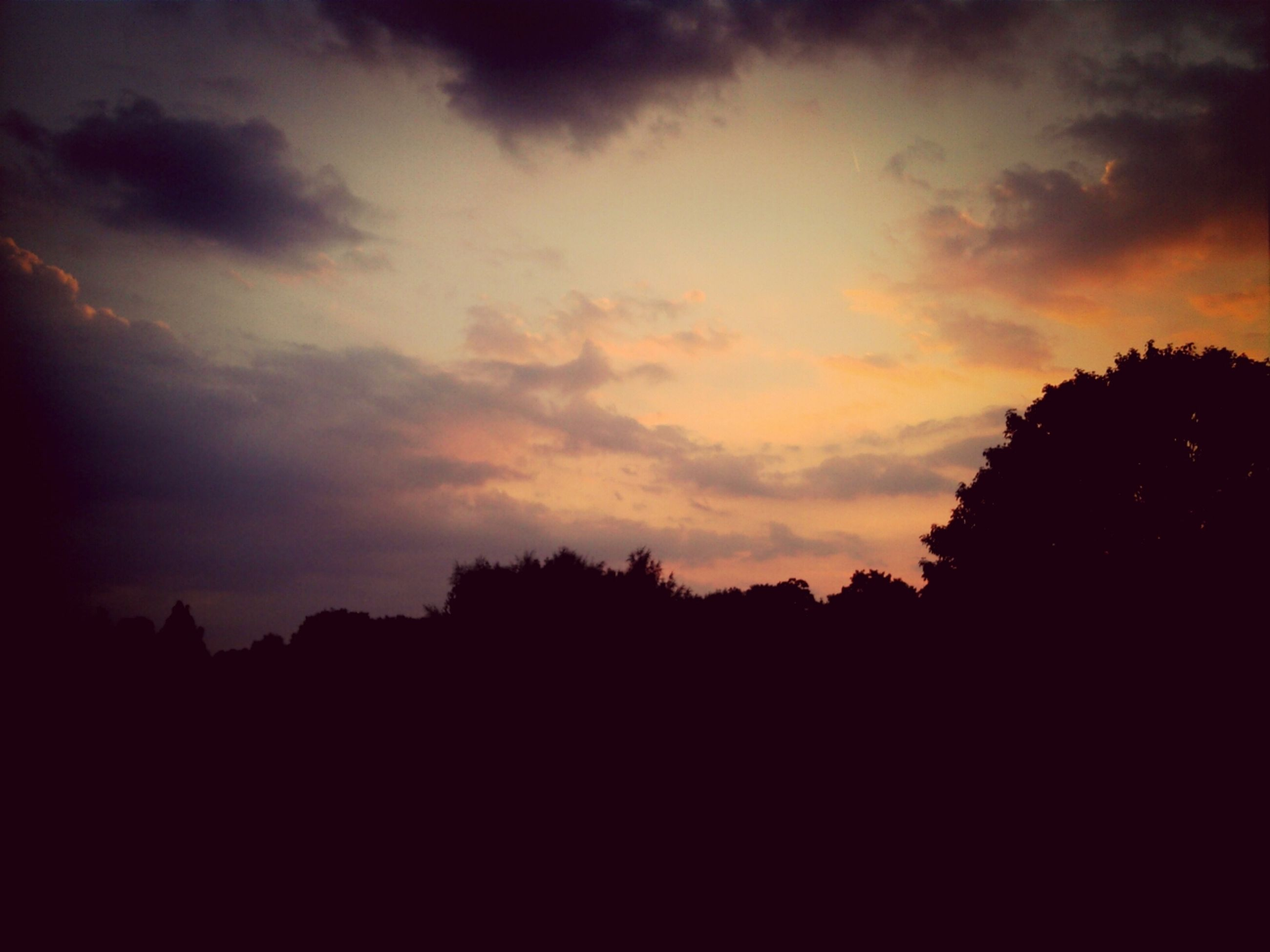 silhouette, sunset, sky, tree, tranquility, beauty in nature, scenics, tranquil scene, nature, cloud - sky, low angle view, dark, idyllic, outline, orange color, dusk, cloud, outdoors, no people, dramatic sky