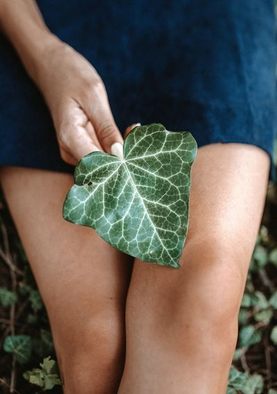 Midsection of woman holding leaf