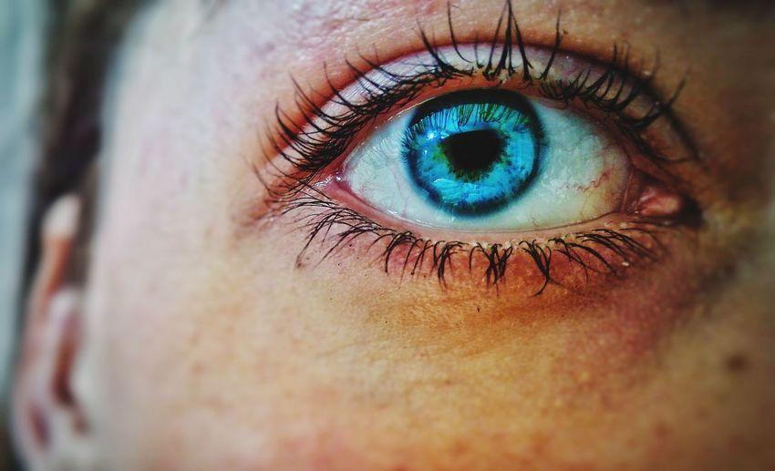 Cropped Image Of Woman Blue Eye