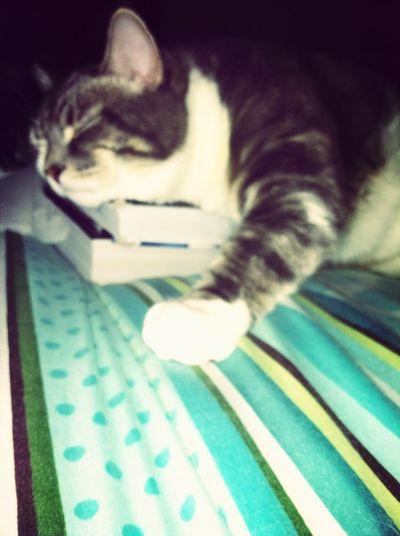 My Bebe Durmiendo <3