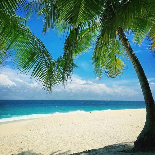 #Fuvahumulak Thoondu, Maldives. This unique beach has white sands that are shiny unlike the usual white sands. Nature Whitebeach Fuvahmulah Sea View #beachview