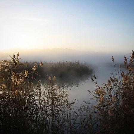 омск сибирь паркпобеды туман осень безфильтров кэнон Omsk Siberia Autumn Fog Morning Nofilter Canon