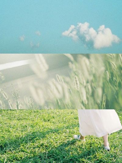 Grass Green Color Sky Nature Film Camera Film Photography Day Film Beauty Japan Grass