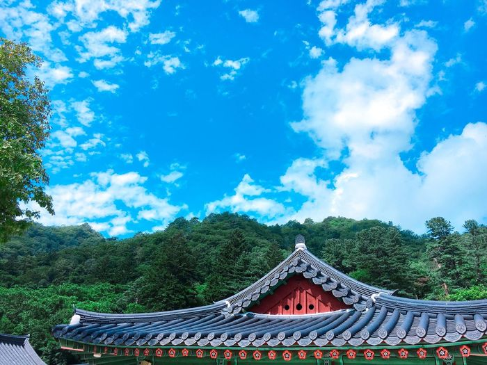 Nature Architecture Beauty In Nature Temple Temple Architecture Built Structure Korea