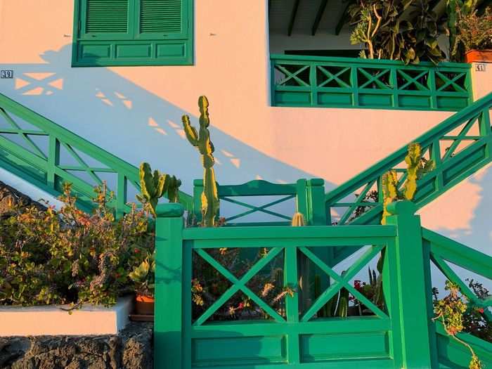 Canarias Lanzarote Island Playa Blanca Built Structure Architecture Building Exterior Building Green Color Day Nature Residential District Outdoors No People