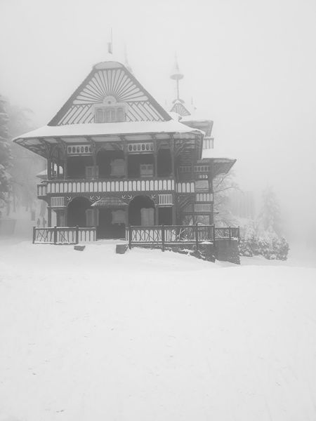 Snowy day in Pustevny Magical Winter Wintertime Winter Wonderland Snow ❄ Snow Snowing Snow Covered Old Buildings Historical Building Beskydy Czech Republic Czech Mountains Architecture Built Structure Old-fashioned Summer Architecture Outdoors No People Building Exterior