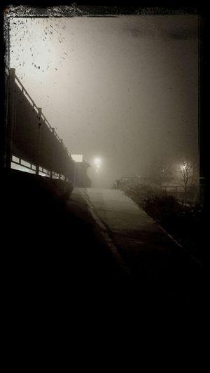 туман Волгоград вчера вечер