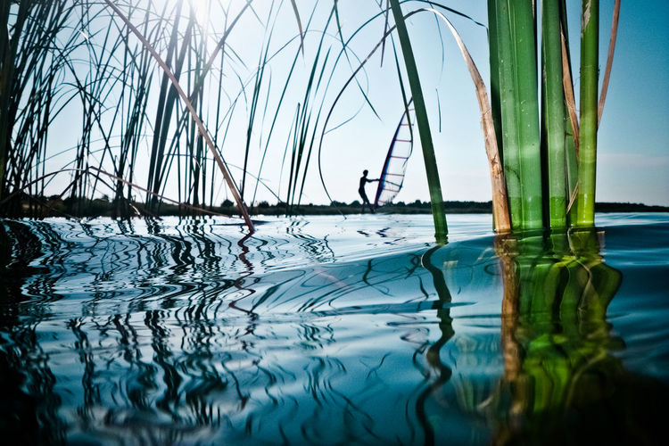 Flooded Nature Water Reflections Clear Sky Close-up Dramatic Horizon Horizon Over Water Lake Nature Outdoors Reed Sport Spy Summer Surface Level Water Water Surface Watersports Wind Windsurf Windsurfing
