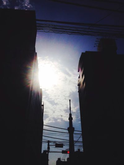 Goodmorning Sun Sunshine Light And Shadow Blue Sky Sky Collection さぁ暑くなるのかな?