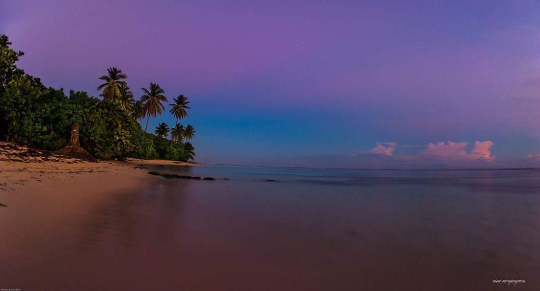 Bois Jolan Sea Sunset Beach Nature Water Sky Horizon Over Water Beauty In Nature Reflection Idyllic Tranquil Scene Scenics Tranquility Blue Sand Tree Outdoors Landscape No People Tropical Climate Stream - Flowing Water Tropical Paradise Flower Collection Nature Photography Nature_perfection