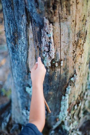 One Person Human Body Part Real People Human Hand Lifestyles Hand Day Outdoors Leisure Activity Close-up Personal Perspective Tree Focus On Foreground Women Nature Selective Focus Body Part Finger Unrecognizable Person High Angle View