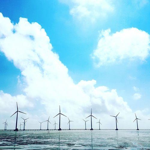 Baclieu Southernvietnam Vietnam Windelectricity Diengiobaclieu
