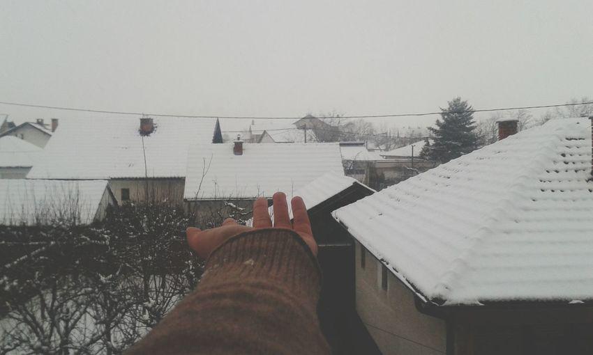 I love winter... Snowing First Snow Winter Winter Wonderland
