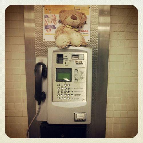 #Berlin #Zoo #Subway #Metro #tube #ubahn #ÜBerlin #igersberlin #ZoologischerGarten #BahnhofZoo Berlin Subway Metro Tube Ubahn Zoo Igersberlin Zoologischergarten Bahnhofzoo überlin