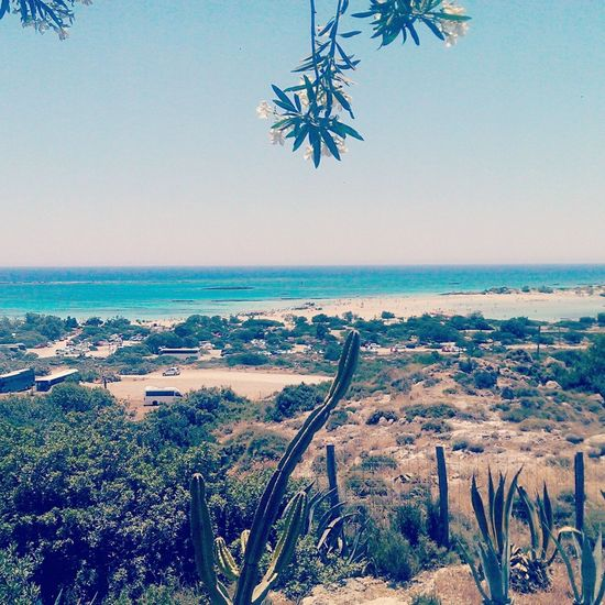 Elafonisi Greece Sea Skyline Sun Sunny Seaside Crete Beach Paradise