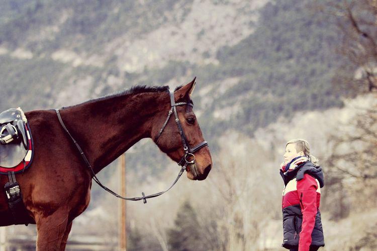 Best Moment 💕 Horse Equestrian Life Equestrian Pferd Meinpferd Brauner Brownhorse Photography Meandmyhorse Mypassion Horsesofinstagram