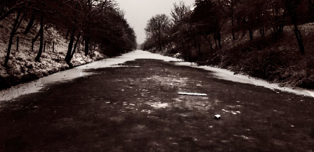 Another edit of the picture from Friday. Canal Frozencanal Water Frozenwater Snow Tree Coldtemperature Winter Baretree Road Forest Snowing Sky Treelined Foggy Frozen Frozenlake Weather Extremeweather Frost Black And White Black And White Photography Black And White Nature The Great Outdoors - 2018 EyeEm Awards A New Beginning