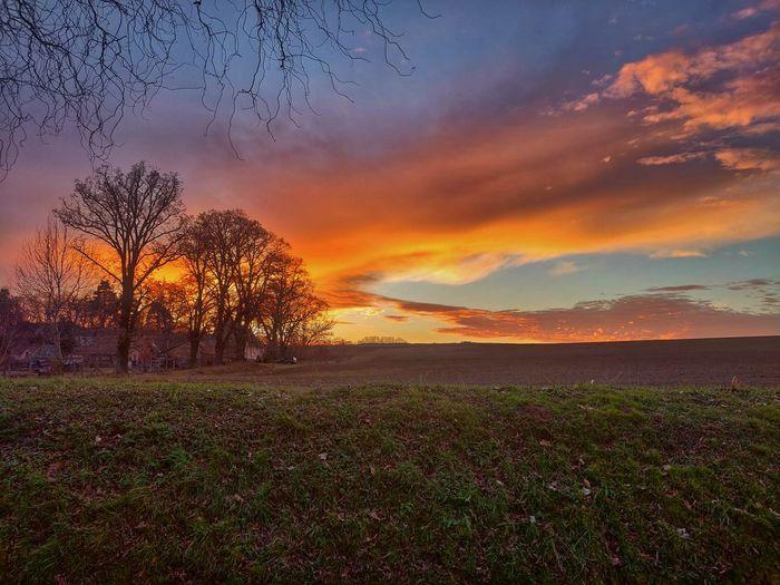 Cloud Rural