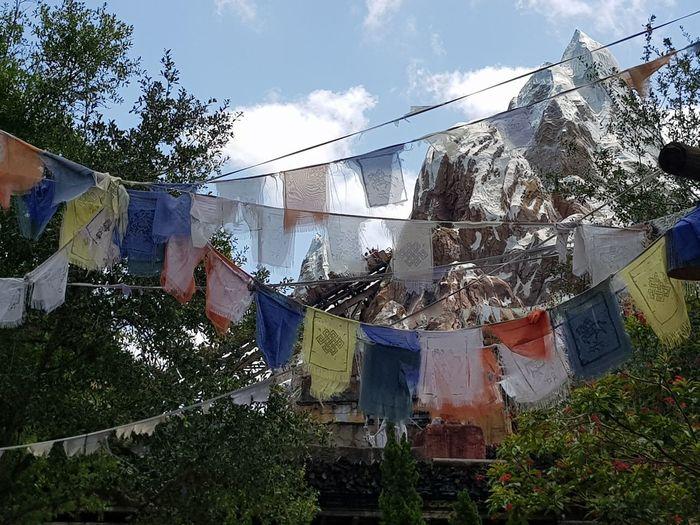 May, 2018 Animal Kingdom Travel Lovethisplace Animalkingdom Everest Green Color Clothesline Flag Sky