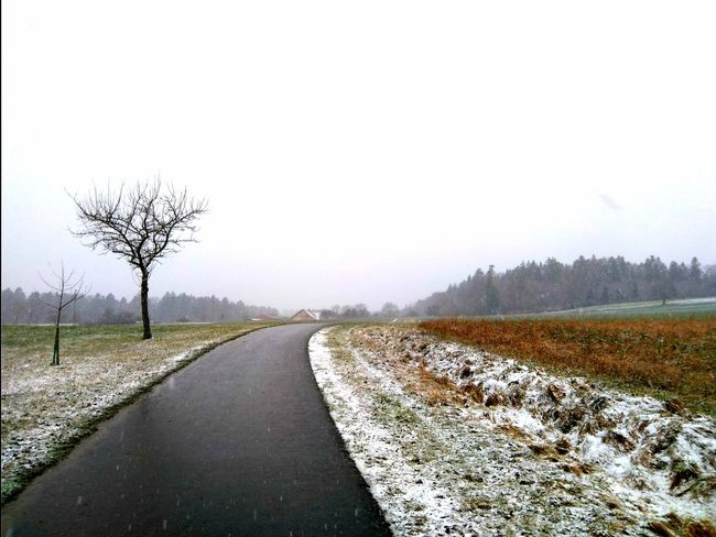 small tree, small road. Path Backgrounds Bare Tree Beauty In Nature Clear Sky Cold Temperature Day Diminishing Perspective Field Landscape Landscapes Nature No People Outdoors Pathway Road Scenics Sky Snow The Way Forward Tranquil Scene Tranquility Tree Way Winter