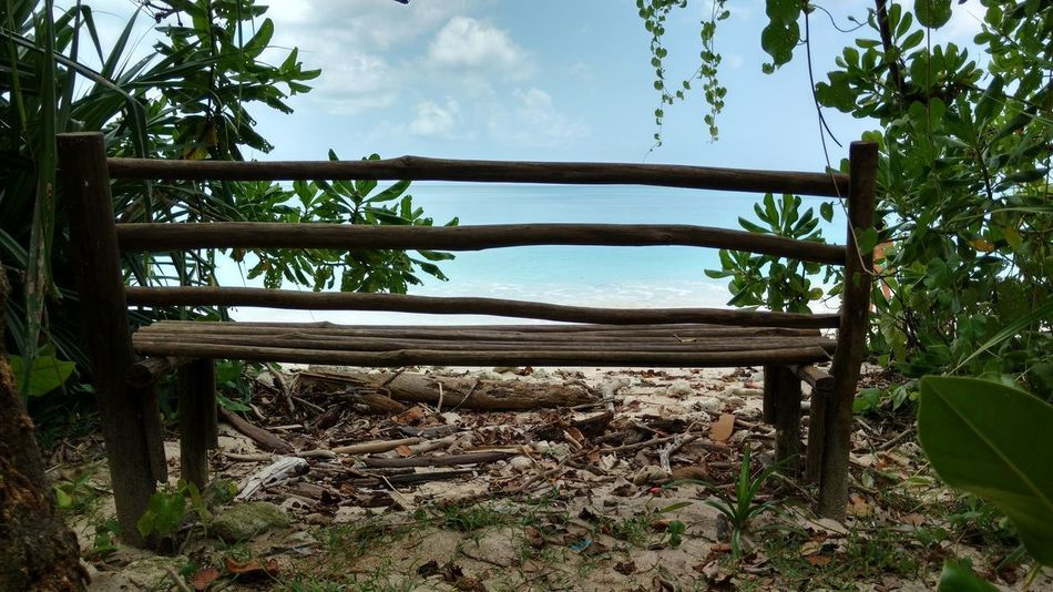Tree Nature Wood - Material Sky Cloud - Sky Outdoors No People Landscape Relaxation Day Scenics Beauty In Nature Water Seating Bench Andaman Nicobar Island Wood Art Sky And Clouds Beachview Leaves And Sky Beatiful Place Eyemgallery Nature Naturelovers