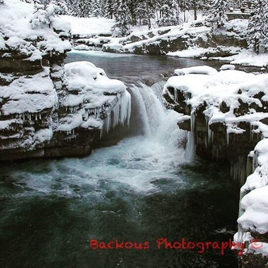 The Gorgeous Elbowfallstrail in the Winter Sopeaceful Sopretty YYC Beautiful Pretty Snowy Winter Sonice Smashthatlikebutton Dontwanttoleave Suchabeautifulday Blowupmyinstagram Blowitup