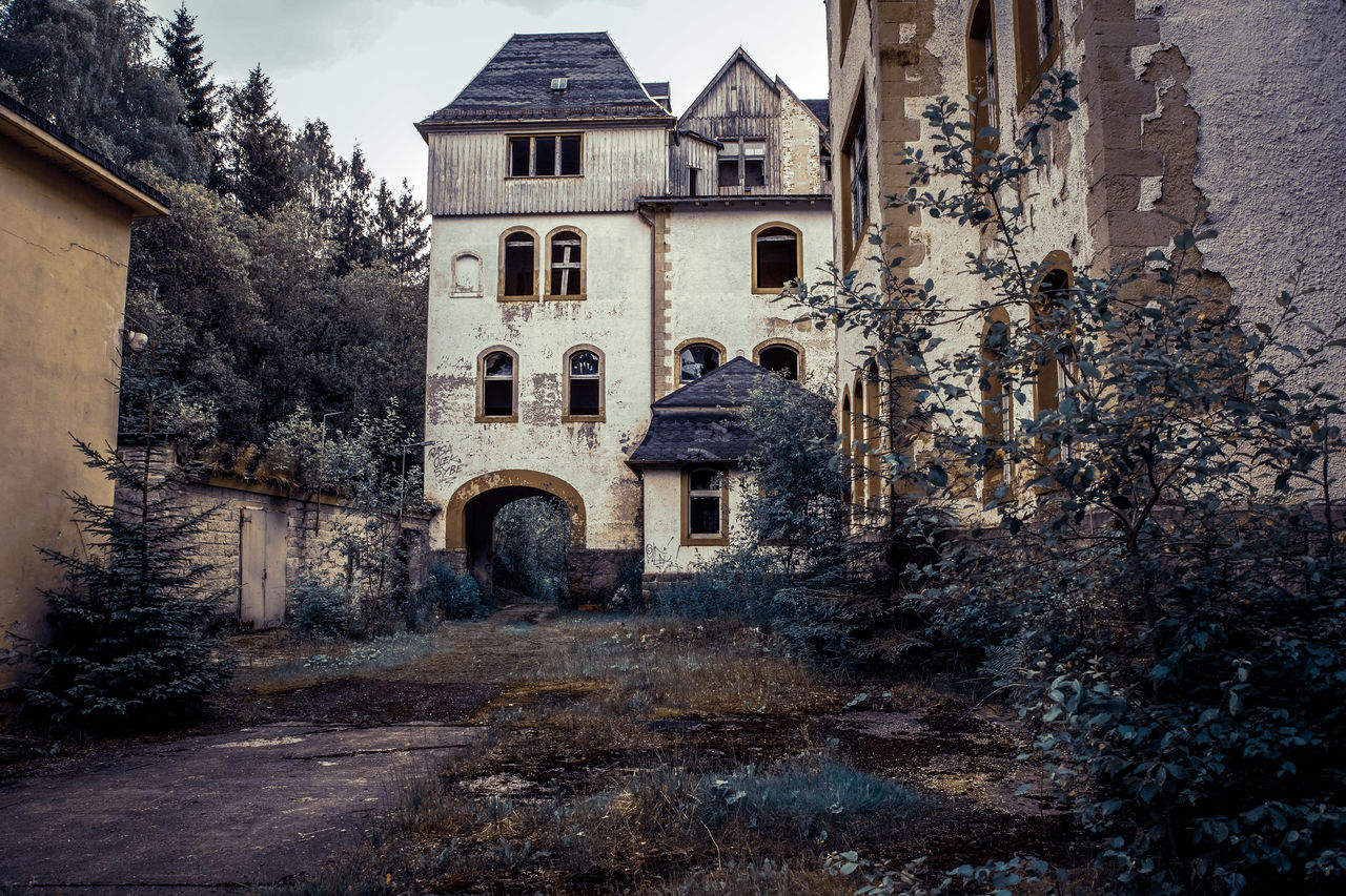 architecture, built structure, building exterior, building, tree, history, the past, old, plant, no people, nature, residential district, house, day, window, abandoned, outdoors, arch, sky, place of worship