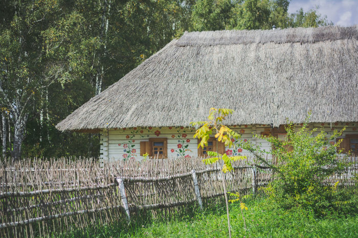 Traditional wooden house Architecture Beauty In Nature Blooming Building Exterior Built Structure Day Ethnomir Flower Fragility Freshness Green Color Growth House In Bloom Nature No People Non-urban Scene Outdoors Plant Scenics Springtime Tranquility Uncultivated Vibrant Color