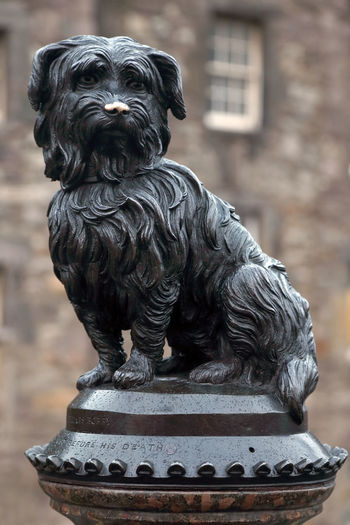Close-Up Of Greyfriars Bobby Statue Against Building