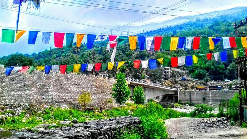 Multi Colored Tree Day Outdoors Sky Buddhism Hanging Flags Himalayas Phoneography Explore Himachal Environmental Conservation Landscape Mountain Range Beauty In Nature Green Green Green!  Green Color Himachal Pradesh Nature Photography