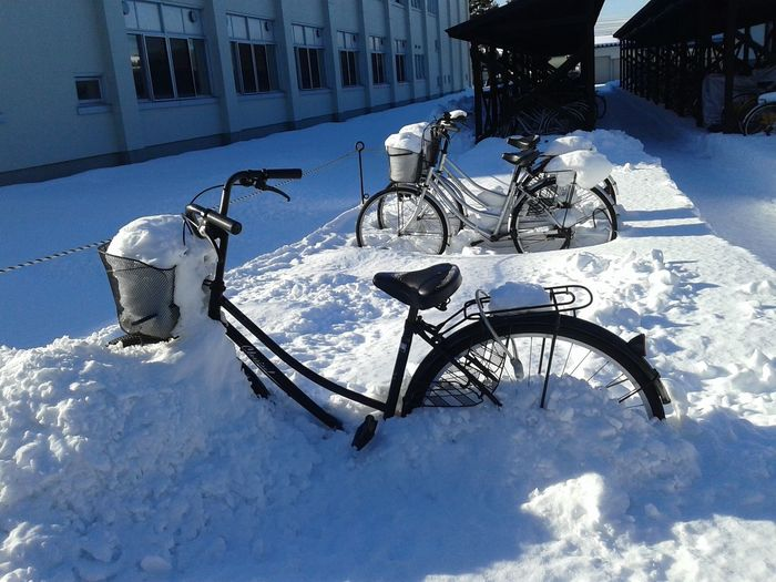 Bicycles parked on snow