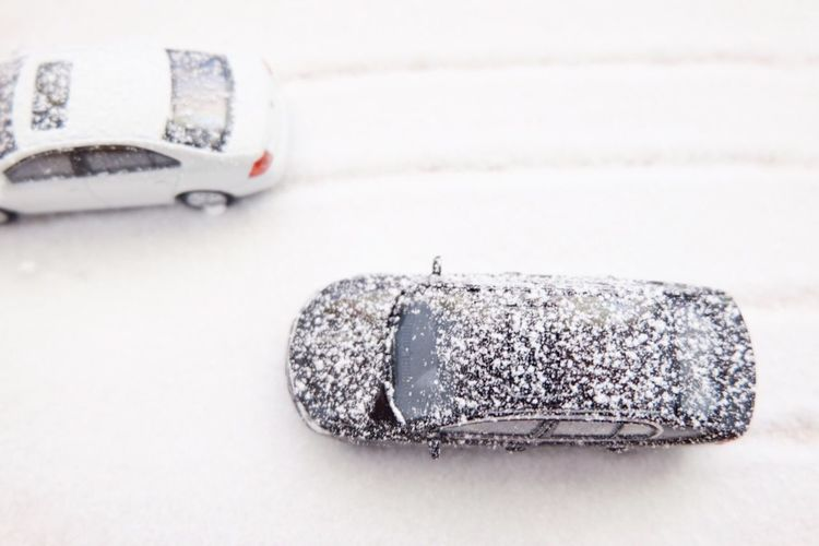 Real or toy? Studio Shot White Background Close-up Toy Cars Micro Photography Fake Nature Snow Handmade Handmade Snow Mini View