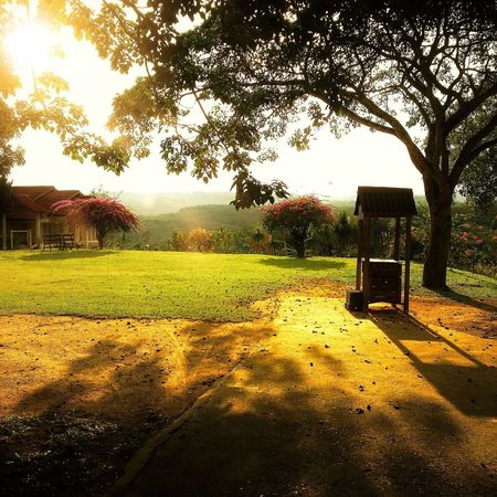 landscape. EyeEm Best Shots Landscape_Collection Sunset #sun #clouds #skylovers #sky #nature #beautifulinnature #naturalbeauty #photography #landscape EyeEm Best Shots - Landscape