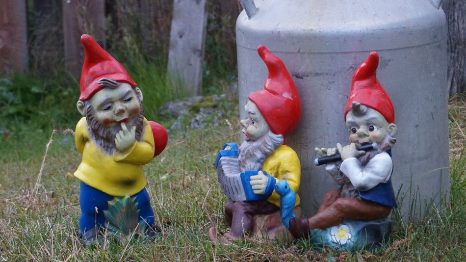 Carefree Casual Clothing Focus On Foreground Friendship Fun Garden Gnomes Garden Photography Gnomes Innocence Lifestyles Multi Colored Perspective